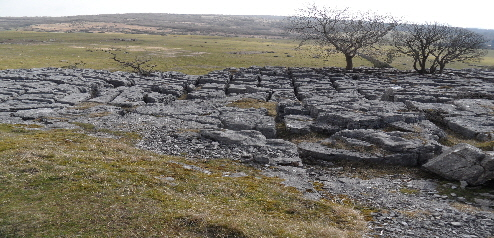 Limestone Pavement, Hutton Roof Crags